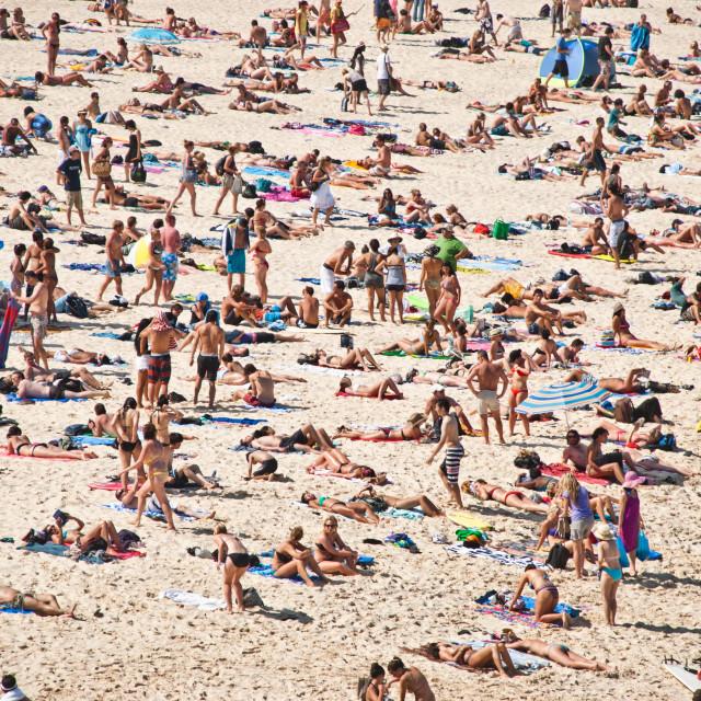"""Beach Day"" stock image"