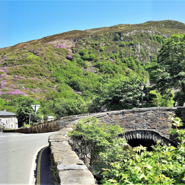 """Panorama of Beddgelert bridge, N.Wales, U.K."" stock image"