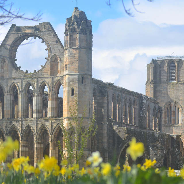 """Elgin Cathedral"" stock image"