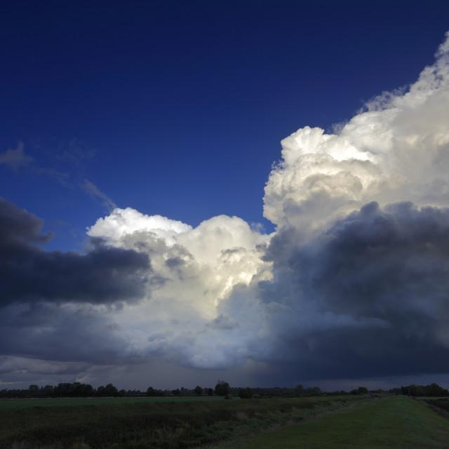 """Big Sky Storm clouds over Fenland fields, Cambridgeshire, England, UK"" stock image"