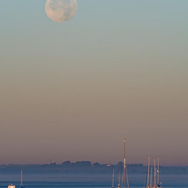 """Morning Moon"" stock image"