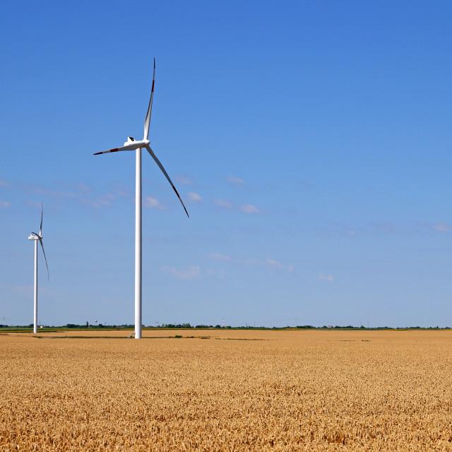 """wind turbines on wheat field green energy"" stock image"