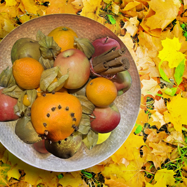 """""""Autumn concept. Yellow and red leaves"""" stock image"""