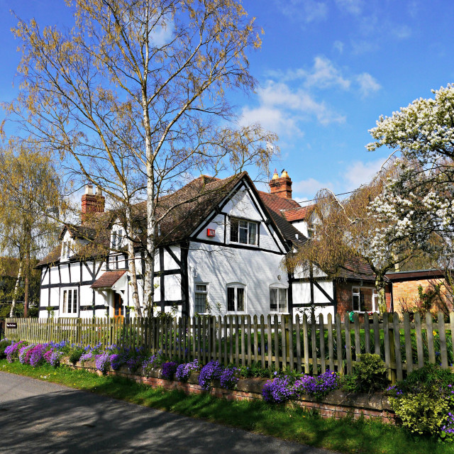 """English Cottage in Spring"" stock image"
