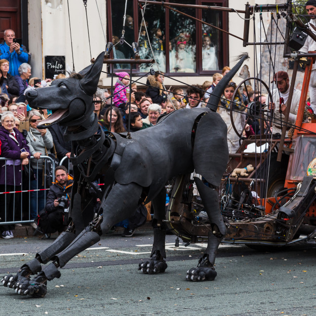 """Xolo looking excited before his final walk into Liverpool"" stock image"