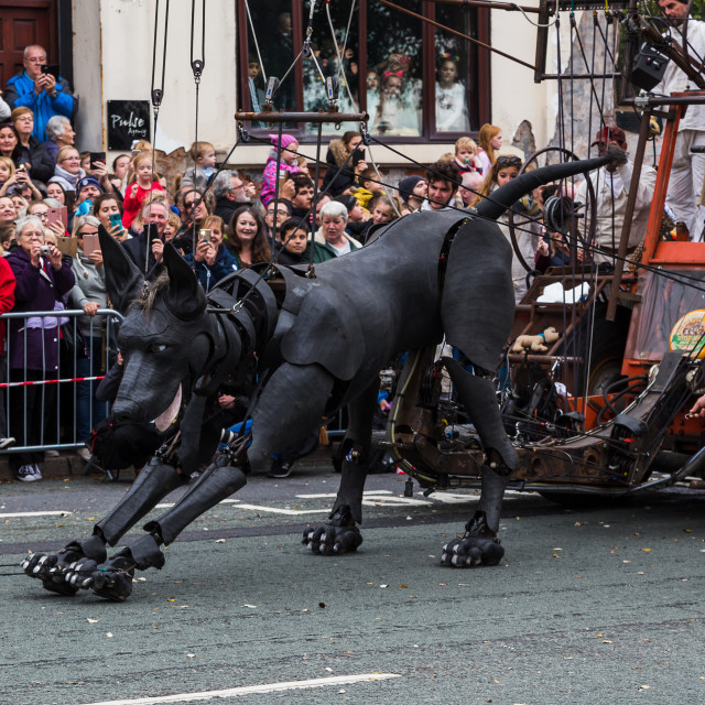 """Xolo enjoys a stretch before walking into Liverpool one final time"" stock image"