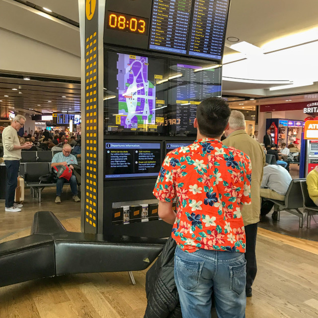 """""""Passenger checking departures information display at an airport"""" stock image"""