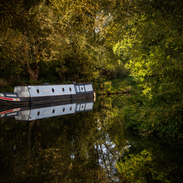 """Canal Boat on the River Stort"" stock image"