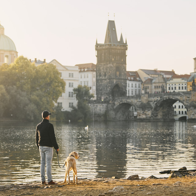 """""""Morning walk with dog"""" stock image"""
