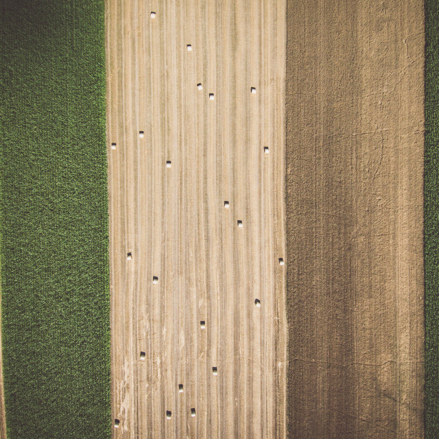 """Aerial view of round hay bales on stubble, view from directly above"" stock image"