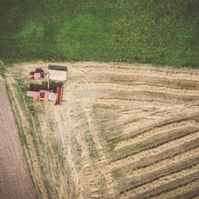 """Aerial view of combine-harvester and tractor working in the field, view from directly avbove"" stock image"