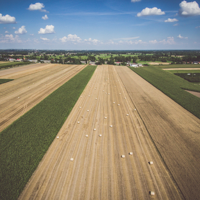 """""""Aerial view of round hay bales on stubble under blue cloudy sky, with a distant village"""" stock image"""