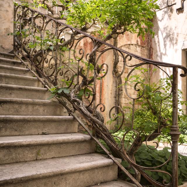 """View of a beautiful old backyard, Croatia"" stock image"