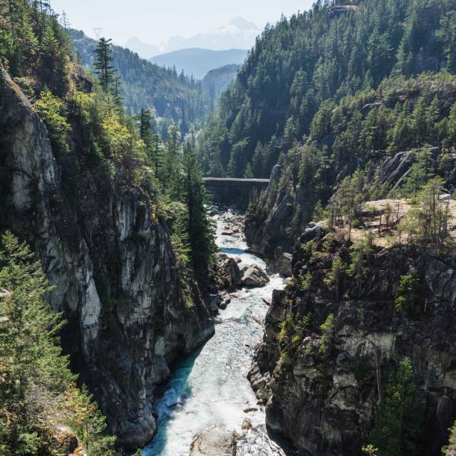 """""""Cheakamus River"""" stock image"""