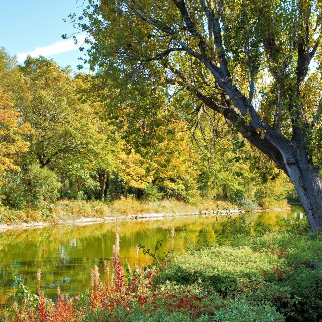 """""""Victoria Park in Autumn"""" stock image"""