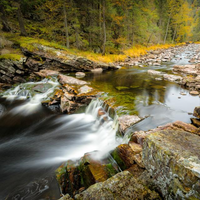 """Autumn Flow"" stock image"