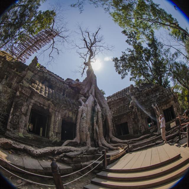 """Angkor Ta Prohm"" stock image"