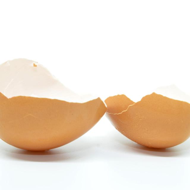 """""""Broken egg shell"""" stock image"""