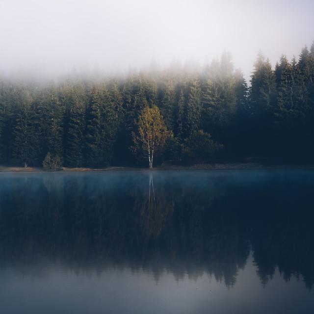 """Saint Anna Lake"" stock image"