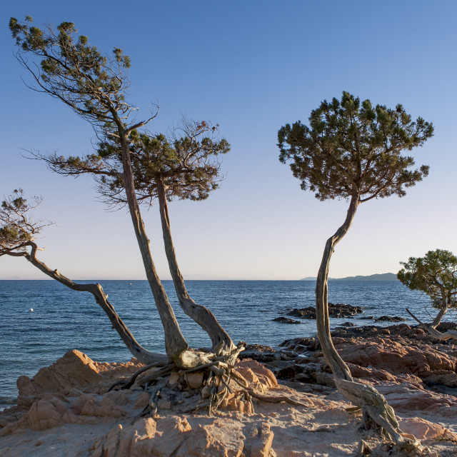 """""""famous beach in corsica"""" stock image"""