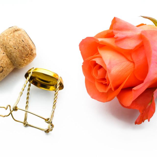 """2019 New year or Saint Valentine Rose"" stock image"