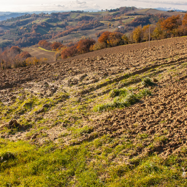"""""""Autumn on the Marche's hill in the Montefeltro region"""" stock image"""