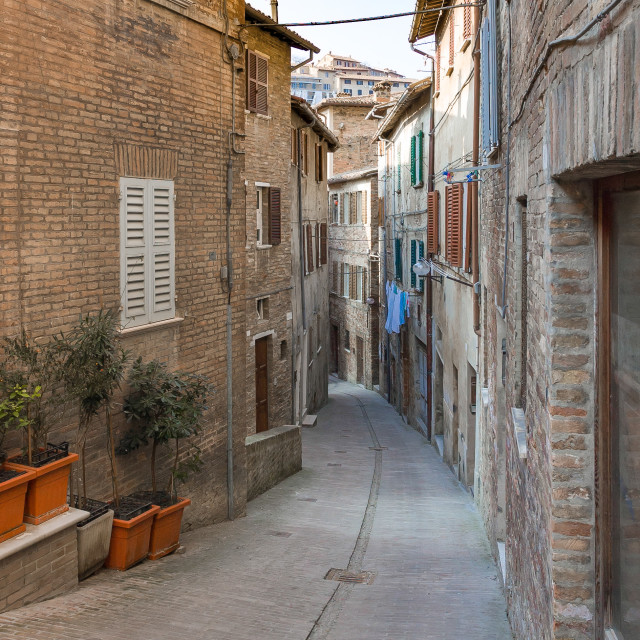"""""""Houses in a Street of Urbino"""" stock image"""