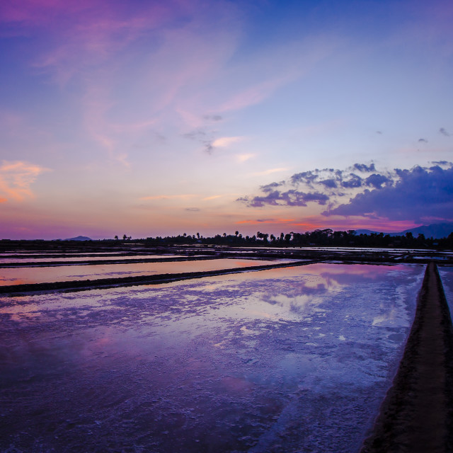 """Kampot Salt Fields"" stock image"