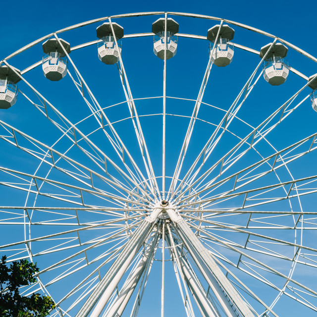 """White Ferris Wheel In Fun Park"" stock image"