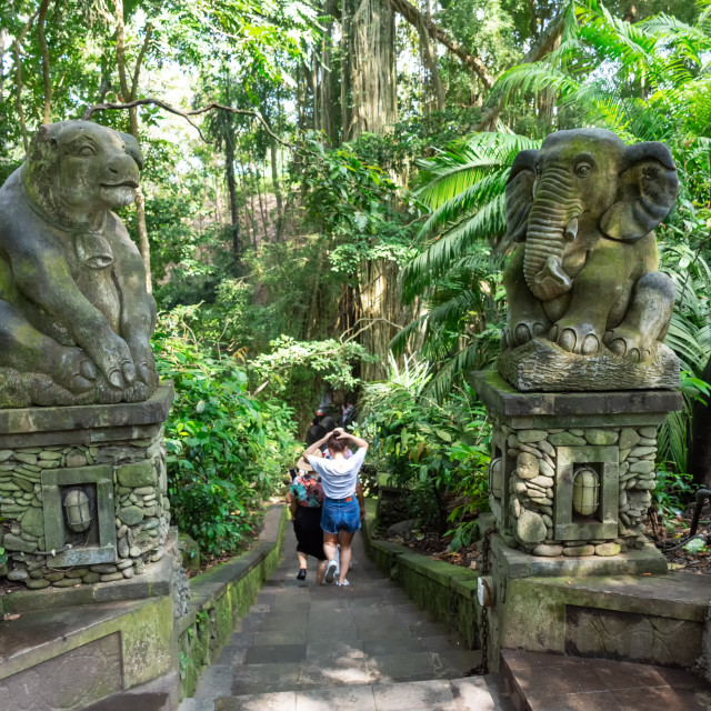 """Sacred Monkey Forest Sanctuary entrance in Ubud, Bali, Indonesia."" stock image"