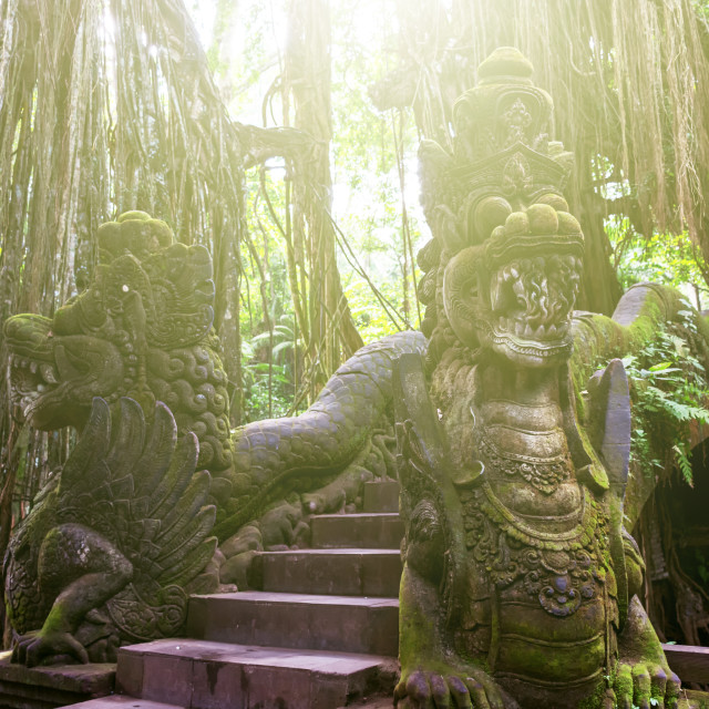 """Sacred Monkey Forest Sanctuary in Ubud, Bali, Indonesia."" stock image"