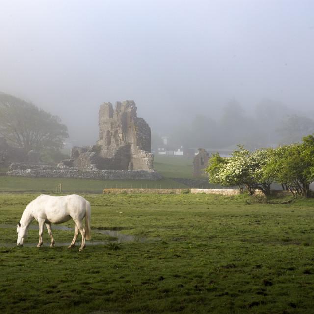 """Ogmore Castle"" stock image"