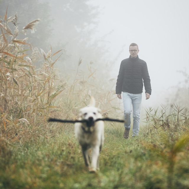 """""""Man walking with dog in autumn fog."""" stock image"""