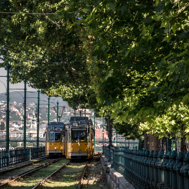 """""""Budapest trams"""" stock image"""