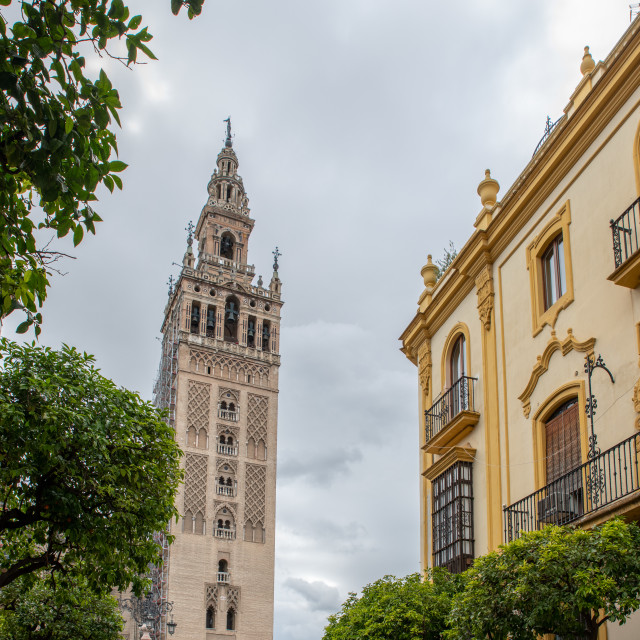 """""""Seville Cathedral Spain"""" stock image"""