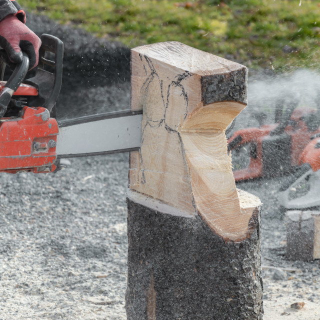 """""""Tree trunk sculpted with a chainsaw"""" stock image"""