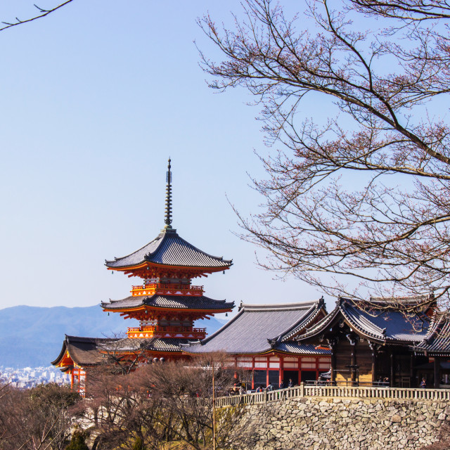 """""""Tourist at Kiyomizu-dera temple during cherry (sakura) blossom time are going to bloom in Kyoto"""" stock image"""
