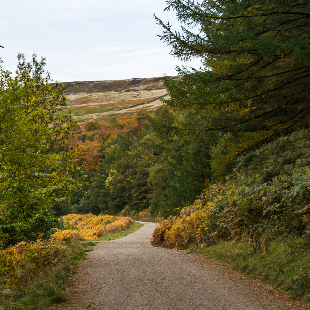 """Winding pathway along the side of Derwent Reservoir"" stock image"