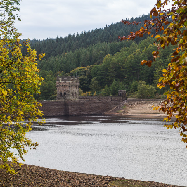 """Derwent Dam framed by trees"" stock image"