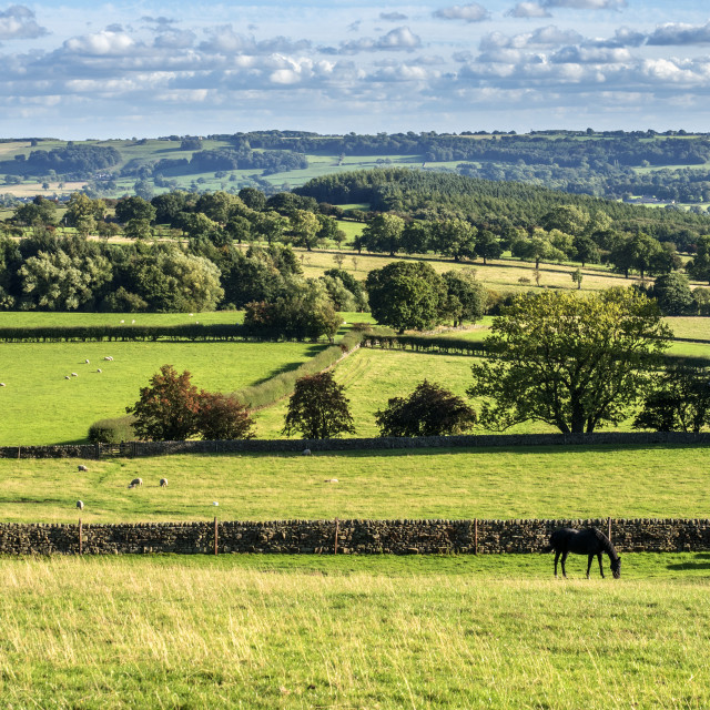 """""""Lower Wharfedale from Stainburn"""" stock image"""