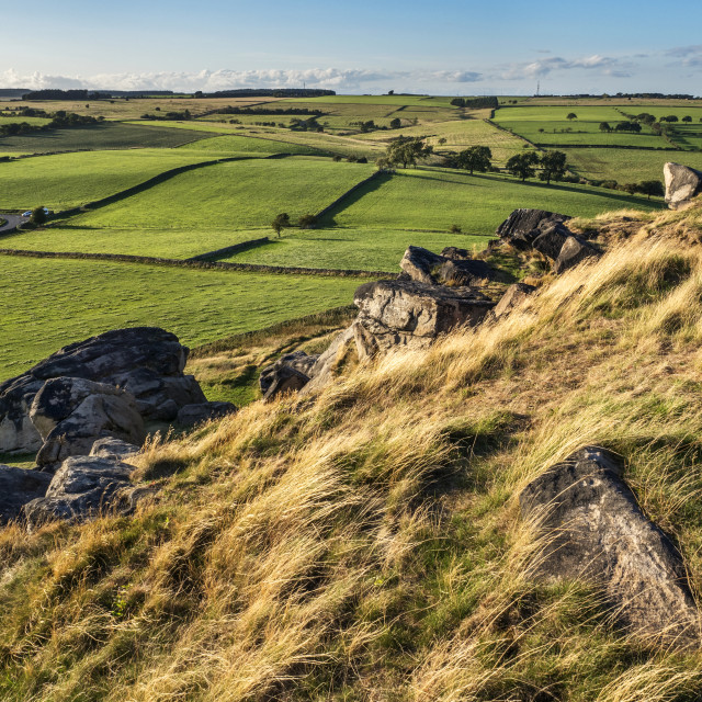 """""""Meadows from Almscliff Crag"""" stock image"""