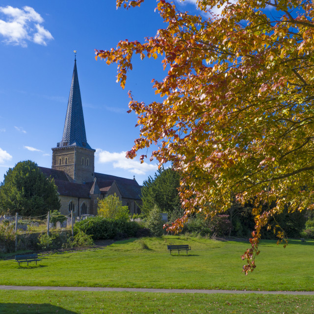 """Parish Church of St. Peter & St. Paul, Godalming ,Surrey in Autumn"" stock image"