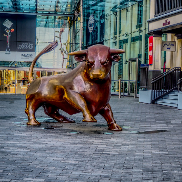 """The Birmingham Bull"" stock image"