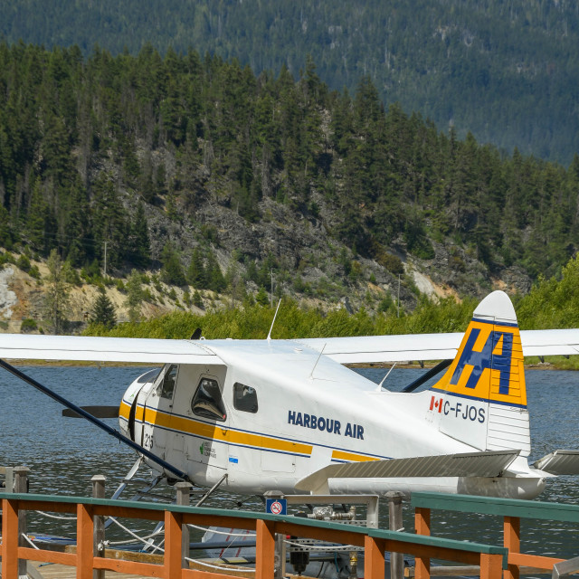 """""""Harbour Air Beaver aircraft at the Whistler Air seaplane terminal"""" stock image"""