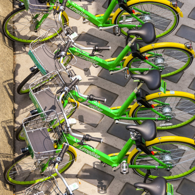 """""""Row of bicycles for hire in """"LimeBike"""" rental program."""" stock image"""
