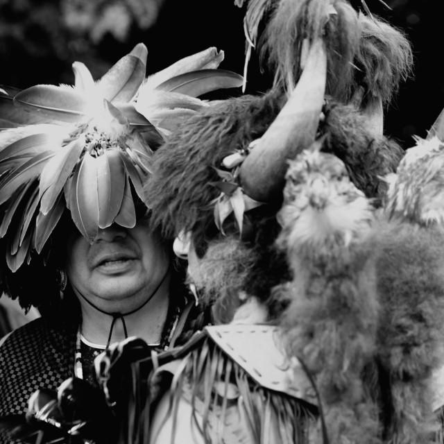 """""""Indigenous Eagle man"""" stock image"""