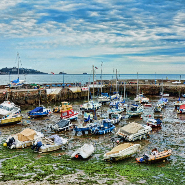 """Paignton Harbour with tide out"" stock image"