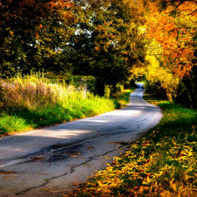 """Autumn Dreams."" stock image"
