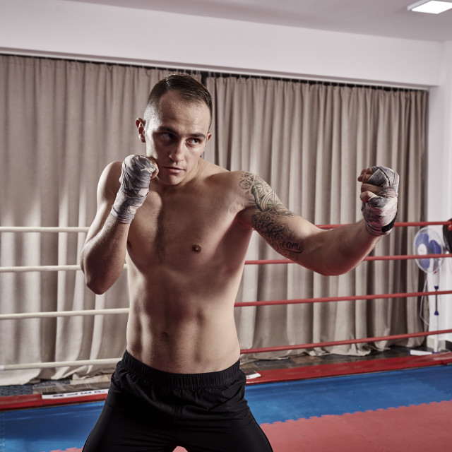 """""""Fighter shadow boxing in the ring"""" stock image"""