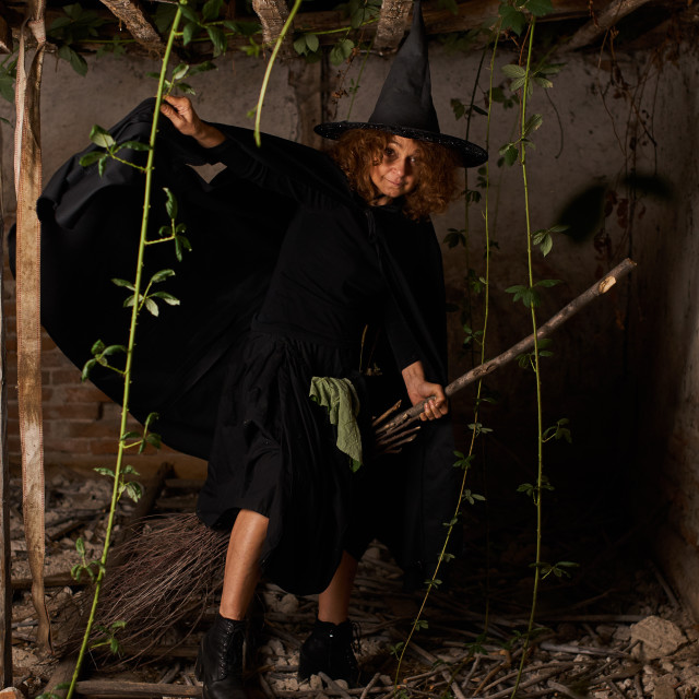 """""""Old witch with a broom"""" stock image"""
